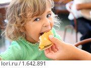Купить «Мама кормит дочку гамбургером», фото № 1642891, снято 1 августа 2009 г. (c) Losevsky Pavel / Фотобанк Лори