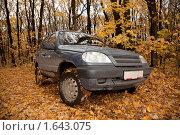 Купить «Грязная машина в осеннем лесу», фото № 1643075, снято 10 октября 2009 г. (c) Losevsky Pavel / Фотобанк Лори