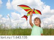 Маленькая девочка с воздушным змеем. Стоковое фото, фотограф Losevsky Pavel / Фотобанк Лори