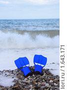 Купить «Ласты на берегу моря», фото № 1643171, снято 15 июля 2009 г. (c) Losevsky Pavel / Фотобанк Лори