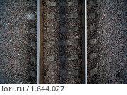 Купить «Железнодорожные рельсы», фото № 1644027, снято 29 ноября 2009 г. (c) Losevsky Pavel / Фотобанк Лори