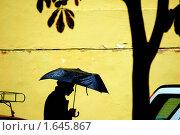 Купить «Городские силуэты», фото № 1645867, снято 19 сентября 2008 г. (c) Иван Нестеров / Фотобанк Лори
