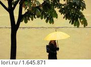 Купить «Женщина с желтым зонтом», фото № 1645871, снято 19 сентября 2008 г. (c) Иван Нестеров / Фотобанк Лори
