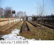 Купить «В саду ранней весной», фото № 1650075, снято 10 апреля 2010 г. (c) Виктор Сухарев / Фотобанк Лори