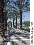 Купить «Аллея у реки Иордан», фото № 1652759, снято 22 августа 2009 г. (c) Кузнецов Дмитрий / Фотобанк Лори