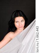 Купить «Девушка с серебристым шелком», фото № 1662443, снято 3 марта 2010 г. (c) Okssi / Фотобанк Лори