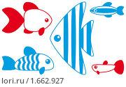 Купить «Аквариумные рыбки», иллюстрация № 1662927 (c) Ольга Иванова / Фотобанк Лори