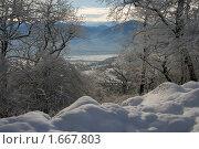 Настоящая зима. Стоковое фото, фотограф Святослав Гордин / Фотобанк Лори