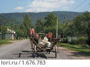 Купить «Лошадь с телегой в селе Ужок в Закарпатье», фото № 1676783, снято 16 августа 2007 г. (c) Aleksander Kaasik / Фотобанк Лори