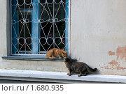 Купить «Поцелуй», фото № 1680935, снято 6 сентября 2009 г. (c) Александр Рябов / Фотобанк Лори