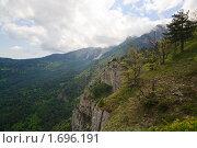 Весна на горе Ай-Петри (2009 год). Стоковое фото, фотограф Юрий Брыкайло / Фотобанк Лори