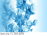 Купить «Цветы в голубом тоне», фото № 1701879, снято 19 июля 2008 г. (c) ElenArt / Фотобанк Лори
