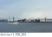 Купить «Санкт Петербург. Вид на Стрелку Васильевского острова», фото № 1705391, снято 7 декабря 2008 г. (c) Корчагина Полина / Фотобанк Лори