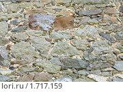 Купить «Каменная стена», фото № 1717159, снято 16 мая 2009 г. (c) Юрий Брыкайло / Фотобанк Лори