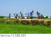Нефть Калининградской области. Стоковое фото, фотограф Качанов Владимир / Фотобанк Лори