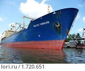 """Нефтеналивное судно """"Балтик форвард"""" (2009 год). Редакционное фото, фотограф Качанов Владимир / Фотобанк Лори"""