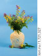 Букет полевых цветов. Стоковое фото, фотограф Елена Блохина / Фотобанк Лори