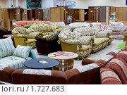 Купить «Магазин мебели», фото № 1727683, снято 25 мая 2010 г. (c) Александр Подшивалов / Фотобанк Лори