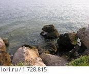 Купить «Скалистый берег азовского моря в Крыму», фото № 1728815, снято 19 июля 2009 г. (c) Марина Бандуркина / Фотобанк Лори