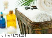 Купить «Банные принадлежности», фото № 1731231, снято 26 сентября 2008 г. (c) Наталия Кленова / Фотобанк Лори