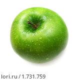 Купить «Зеленое яблоко с каплями воды», фото № 1731759, снято 15 июля 2009 г. (c) ElenArt / Фотобанк Лори