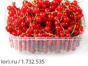 Купить «Ягоды красной смородины», фото № 1732535, снято 18 декабря 2009 г. (c) ElenArt / Фотобанк Лори