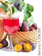Купить «Сливы и вино», фото № 1734391, снято 7 сентября 2008 г. (c) Елена Блохина / Фотобанк Лори