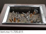 Купить «Сигареты  затушенные в большой пепельнице», эксклюзивное фото № 1735611, снято 19 января 2010 г. (c) Svet / Фотобанк Лори