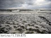 Шторм с берега. Стоковое фото, фотограф Svet / Фотобанк Лори
