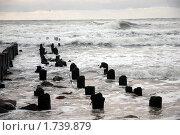 Штормит. Стоковое фото, фотограф Svet / Фотобанк Лори