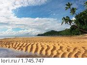Купить «Тропический пейзаж с песчаными дюнами. Фиджи», фото № 1745747, снято 12 мая 2010 г. (c) Татьяна Белова / Фотобанк Лори