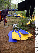 Вёсла для рафтинга в лесном лагере. Стоковое фото, фотограф Денис Гоппен / Фотобанк Лори