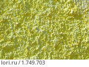 Купить «Поверхность оштукатуренной желтой стены», фото № 1749703, снято 30 апреля 2010 г. (c) Вера Тропынина / Фотобанк Лори