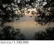 Туман на реке. Стоковое фото, фотограф Фролов Сергей / Фотобанк Лори