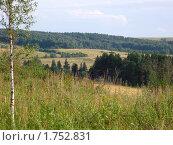 Леса и поля. Стоковое фото, фотограф Геннадий Окатов / Фотобанк Лори