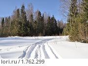 Купить «Лыжня в зимнем лесу», фото № 1762299, снято 18 марта 2009 г. (c) Виктор Сагайдашин / Фотобанк Лори