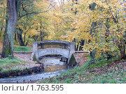 Купить «Старый мостик через парковый ручей», эксклюзивное фото № 1763595, снято 29 октября 2006 г. (c) Svet / Фотобанк Лори