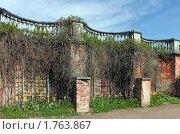 Купить «Фигурная ограда в Петродворце», фото № 1763867, снято 19 мая 2010 г. (c) Ротманова Ирина / Фотобанк Лори