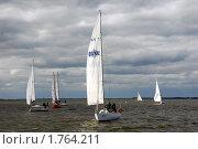 Купить «Парусники в заливе», эксклюзивное фото № 1764211, снято 13 сентября 2008 г. (c) Svet / Фотобанк Лори