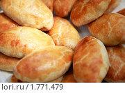 Купить «Пироги», фото № 1771479, снято 12 июня 2010 г. (c) Морозова Татьяна / Фотобанк Лори