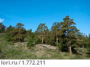 Купить «Горный пейзаж в национальном природном парке Баянаул. Казахстан.», фото № 1772211, снято 29 мая 2010 г. (c) Юлия Врублевская / Фотобанк Лори