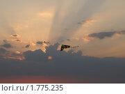 Воздушный змей на фоне лучей заката. Стоковое фото, фотограф Потолоков Роман Игоревич / Фотобанк Лори