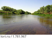 Купить «Летняя река», фото № 1781967, снято 15 июня 2010 г. (c) Евгений Батраков / Фотобанк Лори
