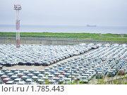 Склад временного хранилища для автомобилей (2010 год). Редакционное фото, фотограф Анастасия Шелестова / Фотобанк Лори