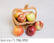 Купить «Яблоки различных сортов в резной деревянной вазе для фруктов», эксклюзивное фото № 1786959, снято 21 июня 2010 г. (c) Александр Щепин / Фотобанк Лори