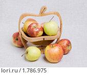Купить «Яблоки различных сортов в резной деревянной вазе для фруктов», эксклюзивное фото № 1786975, снято 21 июня 2010 г. (c) Александр Щепин / Фотобанк Лори