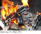 Купить «Горящий костер», эксклюзивное фото № 1792711, снято 6 июня 2010 г. (c) Blekcat / Фотобанк Лори