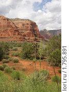 Купить «Аризона. Седона - страна красных скал», фото № 1795891, снято 24 мая 2009 г. (c) Julia Nelson / Фотобанк Лори