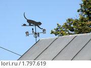 Купить «Декоративный флюгер на крыше дома», фото № 1797619, снято 26 июня 2010 г. (c) Gagara / Фотобанк Лори