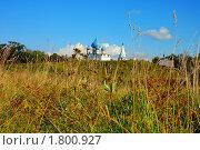 Суздаль (2009 год). Стоковое фото, фотограф Инна Агадецкая / Фотобанк Лори